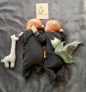 Zwillinge sind 2 Monate alt